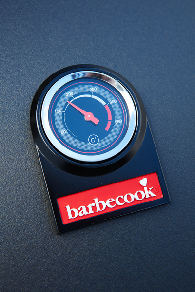 What are the advantages of a Spring 3002 gas BBQ?