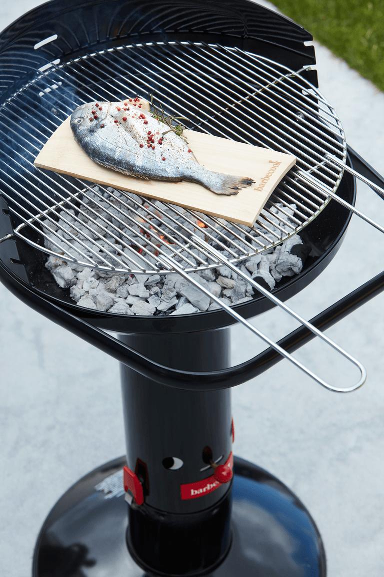 Loewy 50 charcoal BBQ